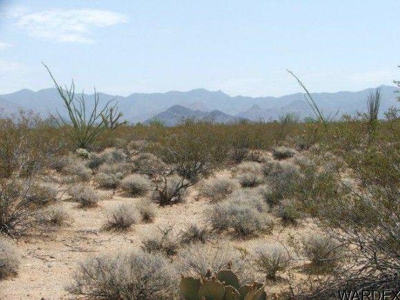 3054/58 Dateland Rd., Yucca, AZ 86438 Photo 12