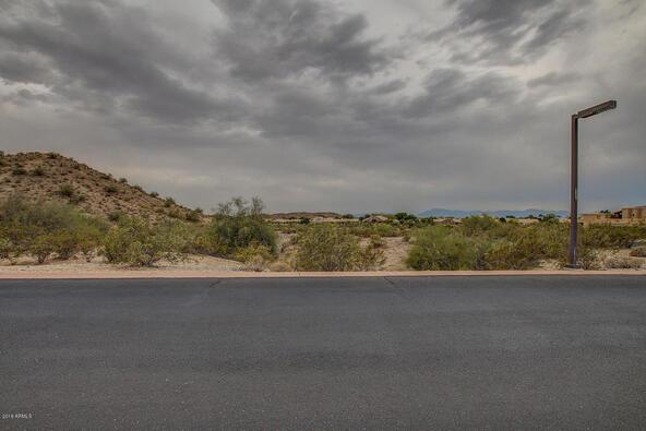 14228 S. Canyon Dr., Phoenix, AZ 85048 Photo 16