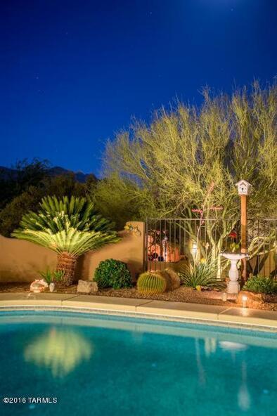 10361 N. Wild Creek, Oro Valley, AZ 85742 Photo 31