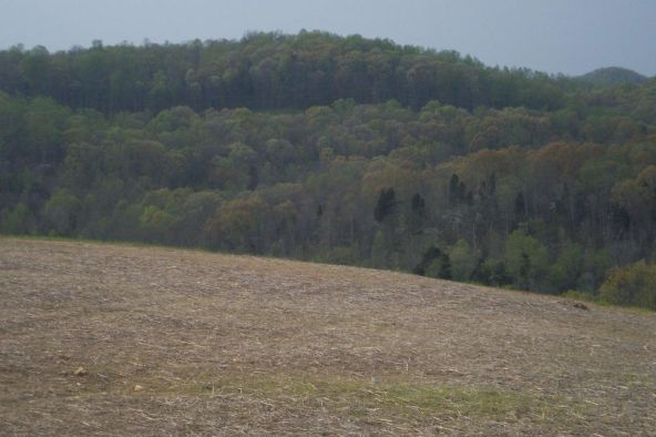 The Preserve At Clinch River, Oak Ridge, TN 37830 Photo 20