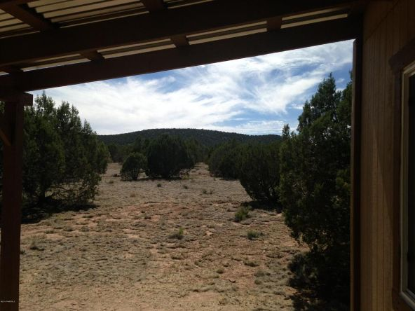 1 Baca Vista Dr., Seligman, AZ 86337 Photo 8