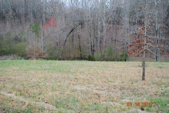 331 Cr 586, Rogersville, AL 35652 Photo 23