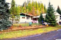 Home for sale: 359 French Mountain Rd., Pierce, ID 83546