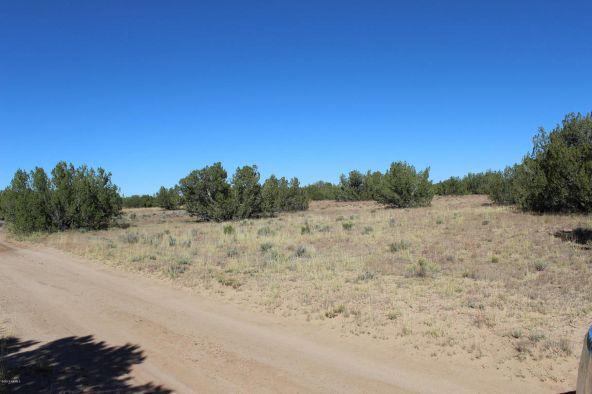 7209 N. Hwy. 191 --, Sanders, AZ 86512 Photo 6