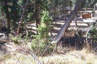 Home for sale: 955 W. Bear Track, Duck Creek Village, UT 84762