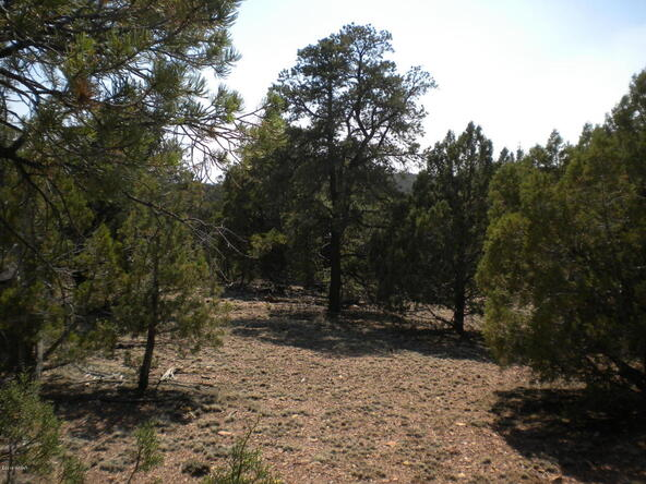 1853 Woolford Rd., Pinedale, AZ 85934 Photo 8