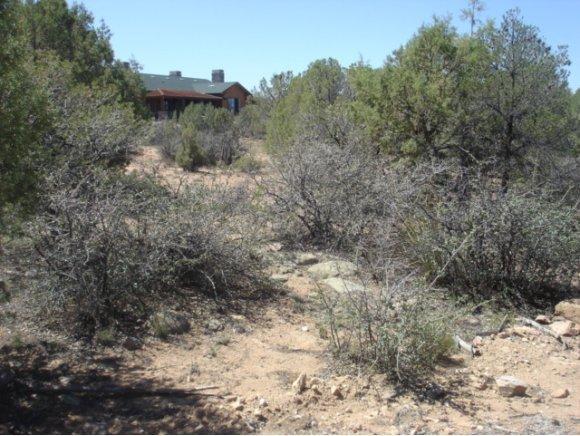14480 N. Soza Mesa Ln., Prescott, AZ 86305 Photo 18