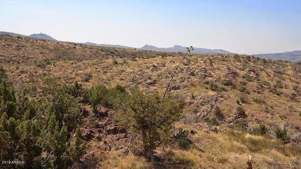 65 N. Juans Canyon (Forest Service) Rd., Cave Creek, AZ 85331 Photo 56