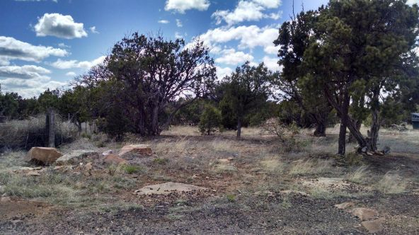 1864 Bull Hollow Rd., Show Low, AZ 85901 Photo 2