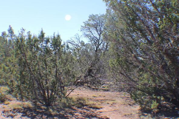 2 Acres Off Of Acr N. 3114, Vernon, AZ 85940 Photo 7