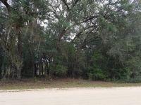 Home for sale: 245 Ashley Lake Dr., Melrose, FL 32666