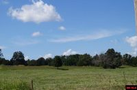 Home for sale: Lot 2 Old Military Rd., Mountain Home, AR 72653