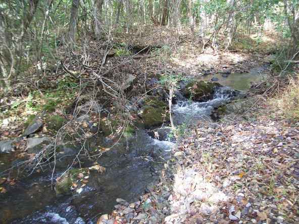 280 Lost End Trail, Hot Springs, AR 71913 Photo 22