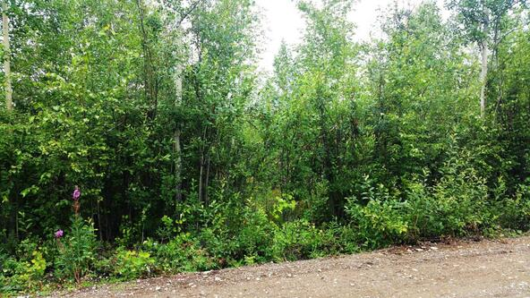 14523 W. Lazy Cir., Big Lake, AK 99652 Photo 1