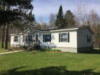 Home for sale: 51195 Wild Wind Trail, Bemidji, MN 56601