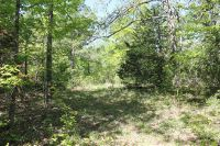 Home for sale: Mtn Springs Rd., Compton, AR 72624