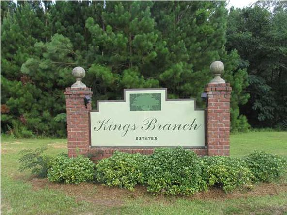 3451 Kings Branch Dr. E., Mobile, AL 36618 Photo 16