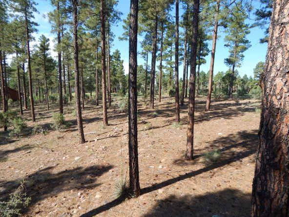 320 N. Retreat Way, Show Low, AZ 85901 Photo 38