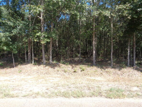 15.6+-Ac Johnny Murphy Rd., Dothan, AL 36301 Photo 1
