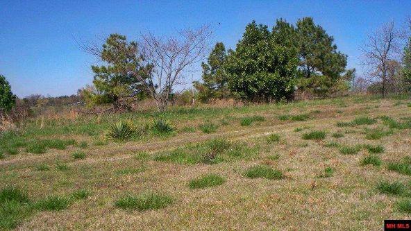277 Trotter Acres, Pineville, AR 72566 Photo 5