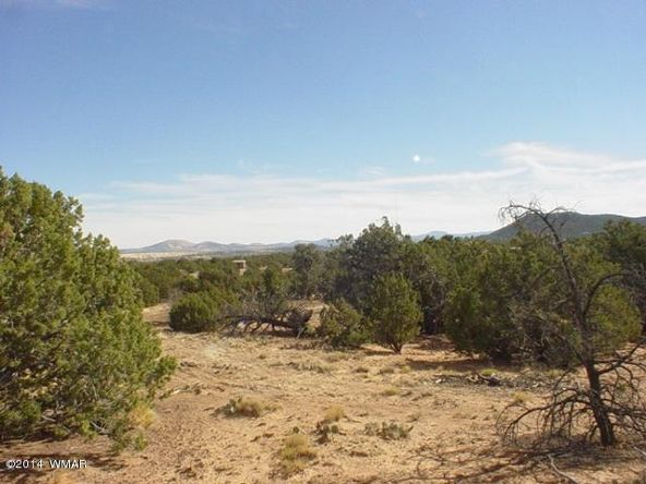 1a N. 8690, Concho, AZ 85924 Photo 31