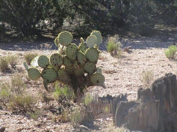13818 N. Grey Bears Trail, Prescott, AZ 86305 Photo 14