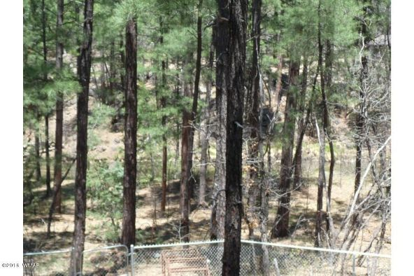 920 W. Billy Creek Dr., Lakeside, AZ 85929 Photo 38