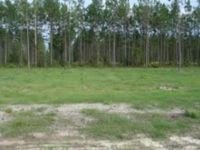 Home for sale: Lot 25 Turpentine Cir., Jesup, GA 31545
