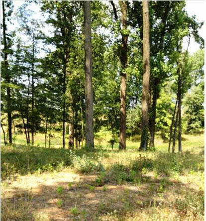 5791 Serenity Dr. Lot 14, Mount Vernon, IN 47620 Photo 29