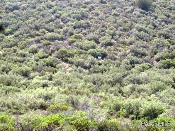 12991 E. Oak Hills Trail, Mayer, AZ 86333 Photo 6