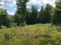 Home for sale: - Tower Ln., Westmore, VT 05860