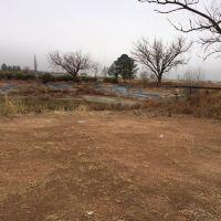Home for sale: 3775 E. Parker Ranch, Pearce, AZ 85625