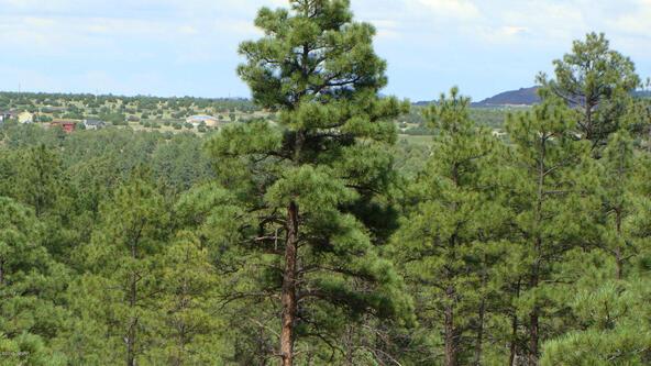 1720 S. Pleasant View Dr., Show Low, AZ 85901 Photo 6