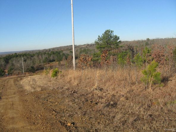 Hwy. 92, 3 Acre Tracts, Springfield, AR 72157 Photo 4
