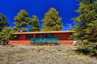 Home for sale: 10627 White Horse Lake Dr., Parks, AZ 86018