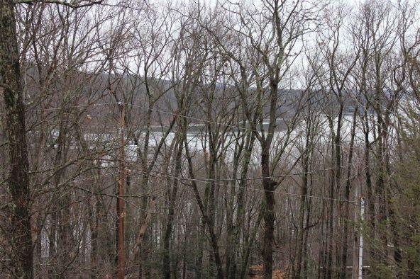32 Ridge Trl, Lakeville, PA 18438 Photo 39