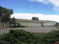 Home for sale: 205 Apollo Rd., Montrose, CO 81401