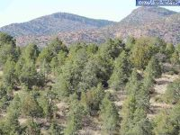 Home for sale: Fleming Tank, Silver City, NM 88061