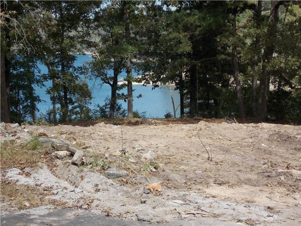 8522 Lakeview Bay, Rogers, AR 72756 Photo 6