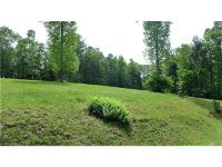 Home for sale: Lot 14 A/B Reserve Rd., Pisgah Forest, NC 28768