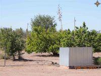 Home for sale: 4895 Spearhead N.W., Deming, NM 88030