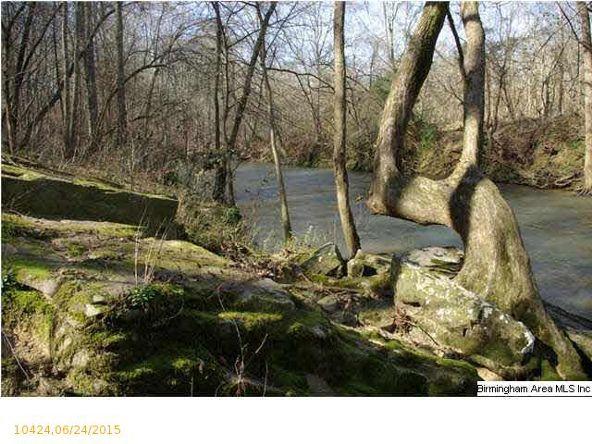 4 Horton Mill Rd., Oneonta, AL 35121 Photo 56