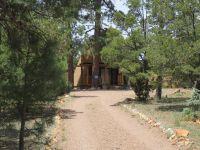 Home for sale: 3530 Buckskin Rd., Overgaard, AZ 85933