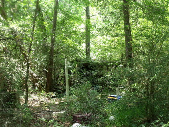 17311 County Rd. 9, Summerdale, AL 36580 Photo 5