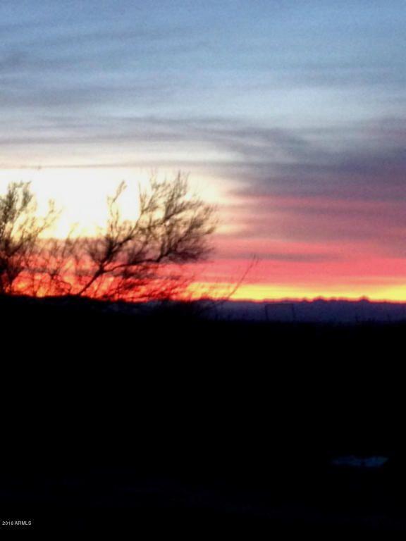 727 Kit Carson Rd., Yucca, AZ 86438 Photo 1