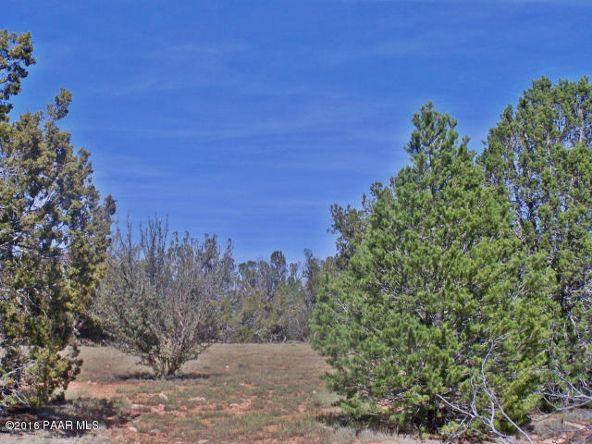 9095 W. Bandera Pass, Williams, AZ 86046 Photo 2