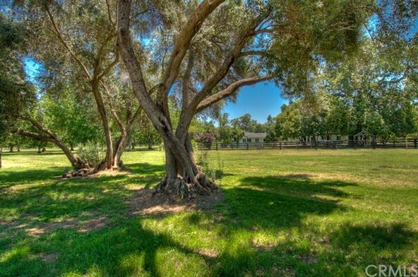 23635 Cone Grove Rd., Red Bluff, CA 96080 Photo 33