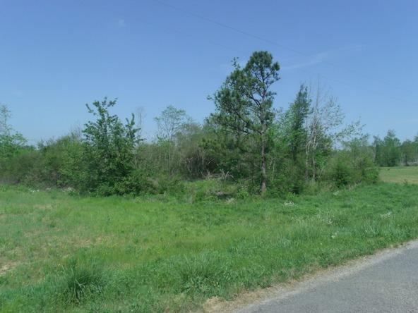 106 Ac County Rd. 1809, Joppa, AL 35087 Photo 1
