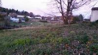 Home for sale: 3240 Ridge Rd., Wytheville, VA 24382