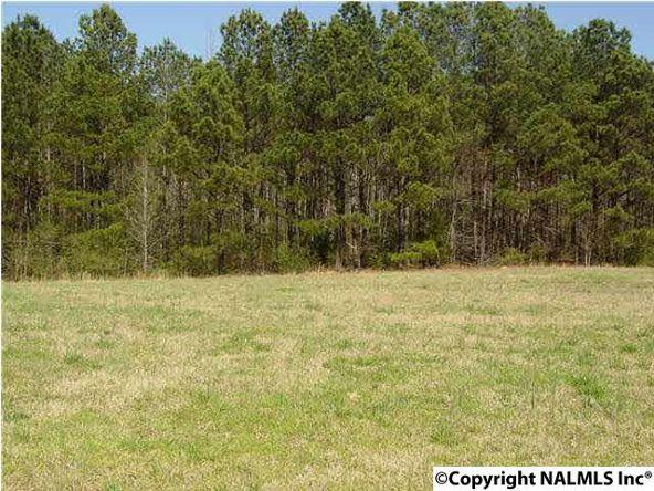 98 Worthington Ln., Guntersville, AL 35976 Photo 2